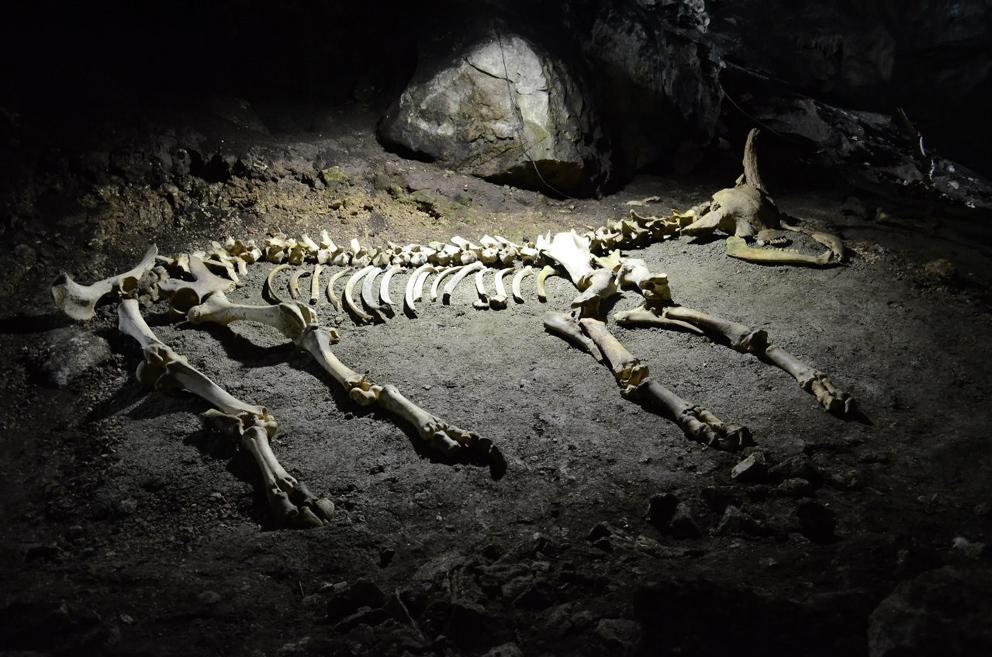 Пещера Мамонтова (другое название – пещера Эмине-Баир-Хосар). Спелеотуризм в Крыму