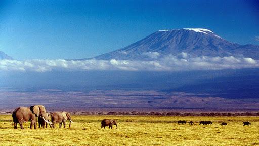 Горы. Килиманджаро